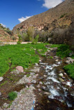 10 Stream flowing down from Toubkal Mountain, Atlas Mountains - Moroc 7478