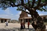 Vittala Temple complex - India-1-9606