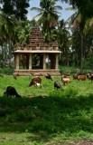 Vittala Temple complex - India-1-9660