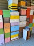 23 Honey bee hives i2785