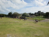 Photo to show the site starting to get busy with tour groups