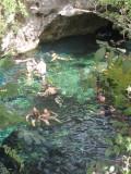 Gran Cenote (sinkhole)
