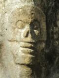 Skull up close