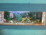 El Acuario - the aquarium - the name of the hotel