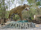 Zoologico Miguel Alvarez del Toro (Zoomat)