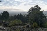 En forêt de Fontainebleau ...