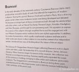 muzeul-Guggenheim-brancusi.JPG