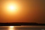 sony-fe-200-600mm-g-oss-sunset_07.JPG