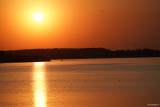 sony-fe-200-600mm-g-oss-sunset_09.JPG