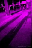 Two Old Ladies - purple.JPG
