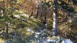 005_Risnjak-Lazac-Snjeznik.jpg