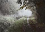 One misty, moisty morning (Old English nursery rhyme).