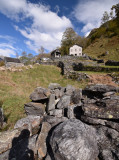 Irish landscape in Valle Verzasca