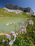 No-name lake near La Berneuse