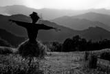 Italian Scarecrow
