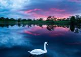 Plassey Sunset