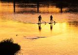 Paddleboarder Sunset