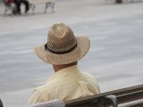 Hats 2052453