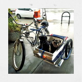 ...another view of this wonderful canine sidecar this fellow built