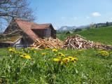 Farmerhouse in Schwarzenberg