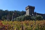 Castello di Amorosa - 2019