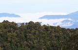 Los Quetzales National Park