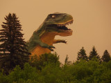 The Tyrannosaurus Rex That Quacked?
