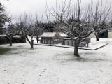 Snow Day In the Garden!