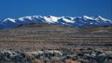 Shoshone Mountains