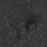 Dark and Reflection Nebulae