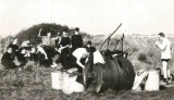 1960'S - 1970'S - EXPEDS TO WICKEN FEN AND OTHER LOCATIONS 3..jpg