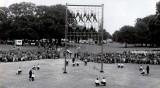 1966-67, 18TH OCTOBER - STUART BUSH, 88 RECR., COLLINGWOOD, 36 MESS, 281 CLASS. E..jpg