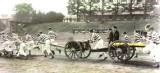 1950 - FRED HARDER, GRENVILLE WINNERS FIELD GUN COMP. - AGAIN..jpg