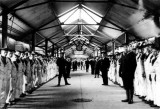 UNDATED - THE LONG COVERED WAY IN THE EARLY DAYS.jpg