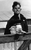 1954, MAY - THE PIG FARM WAS STARTED, THE PIGS WERE SOLD TO HARRISS' BACON FACTORY AT IPSWICH.JPG