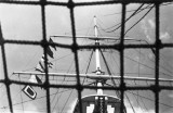 1952 - DOUGLAS CARR - MAST VIEW FROM THE FOOT.jpg