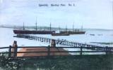 1910 -  POSTCARD, SHOTLEY PIER AND SHIPS.jpg