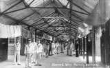 UNDATED -  LONG COVERED WAY.jpg