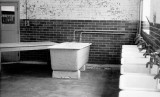 UNDATED - SINKS IN THE LAUNDRY.jpg