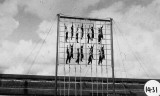 UNDATED - DICKIE DOYLE, WINDOW-LADDER, A FISK PHOTO, 8..JPG