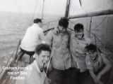 1960 - RICHARD WYATT, SEA FEATHER.jpg