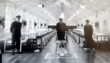 1961, 2ND JANUARY - JOHN HAMBLING, COLLINGWOOD, D..jpg
