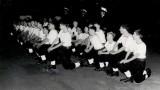 1971 - DAVE CURRINGTON. EARLS COURT WINDOWS LADDER DISPLAY. B.jpg