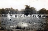 UNDATED - JIM WORLDING, SHEARLEGS TRANSFER DISPLAY, AT A FETE, PROBABLY 1916.jpg