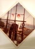 1973 - CHRIS NEWMAN, 41 RECR., D..jpg
