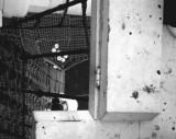 1975 - STEVE PARROTT, LOOKING DOWN THROUGH THE LUBBERS' HOLE.jpg