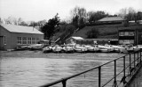 UNDATED - CUTTERS BESIDE THE BOAT SHED.jpg