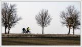 Winter Bikeride