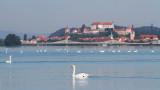 lake_ptuj_ptujsko_jezero