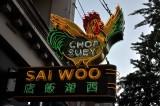 Sai Woo